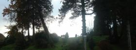 free woods light nature facebook cover