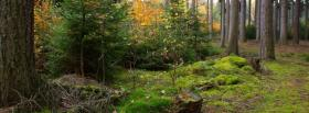 free wild forest nature facebook cover