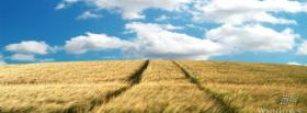 free simple field nature facebook cover