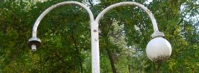 free old light nature facebook cover