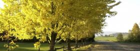 free trees and alley nature facebook cover