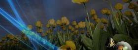 free yellow tulips butterfly facebook cover
