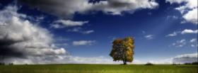free one tree nature facebook cover