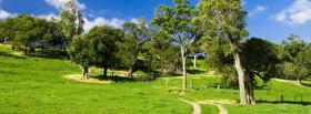 free road and forest nature facebook cover