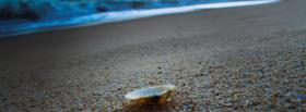 free shell and sand nature facebook cover