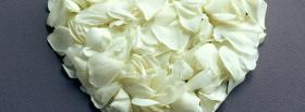 free white petals nature facebook cover