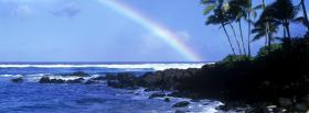 free rainbow palm trees nature facebook cover