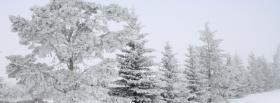 free pure white winer nature facebook cover