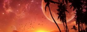free sunset palm trees nature facebook cover