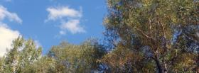 free top of trees nature facebook cover