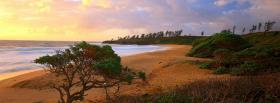 free donkey beach kauai nature facebook cover