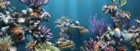 free beauty of the sea nature facebook cover