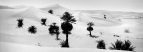 black and white desert facebook cover