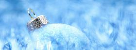 nice icy ornament facebook cover