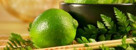zesty lime food facebook cover