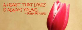 always young quotes facebook cover
