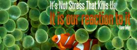 reaction to stress quote facebook cover