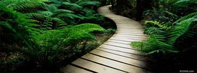 free 3d Nature facebook cover