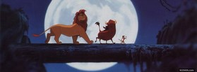 Hakuna Matata Timon At Night facebook cover