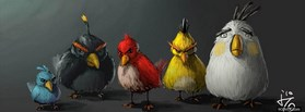 Angry Birds Adult  facebook cover