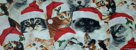 free Christmas Cutes Cats facebook cover